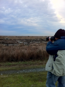 Bill, shooting the owls hunting by the dyke.