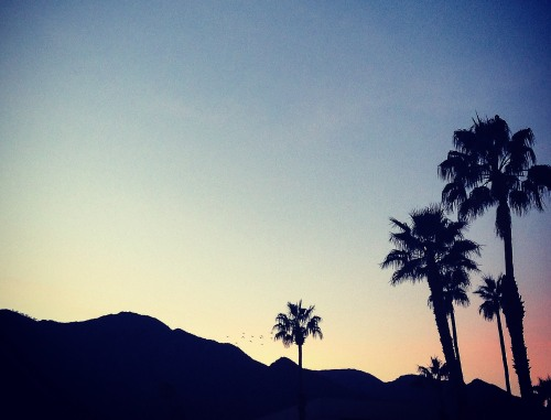 Palm Springs 2015-18